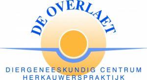 logo de overlaet