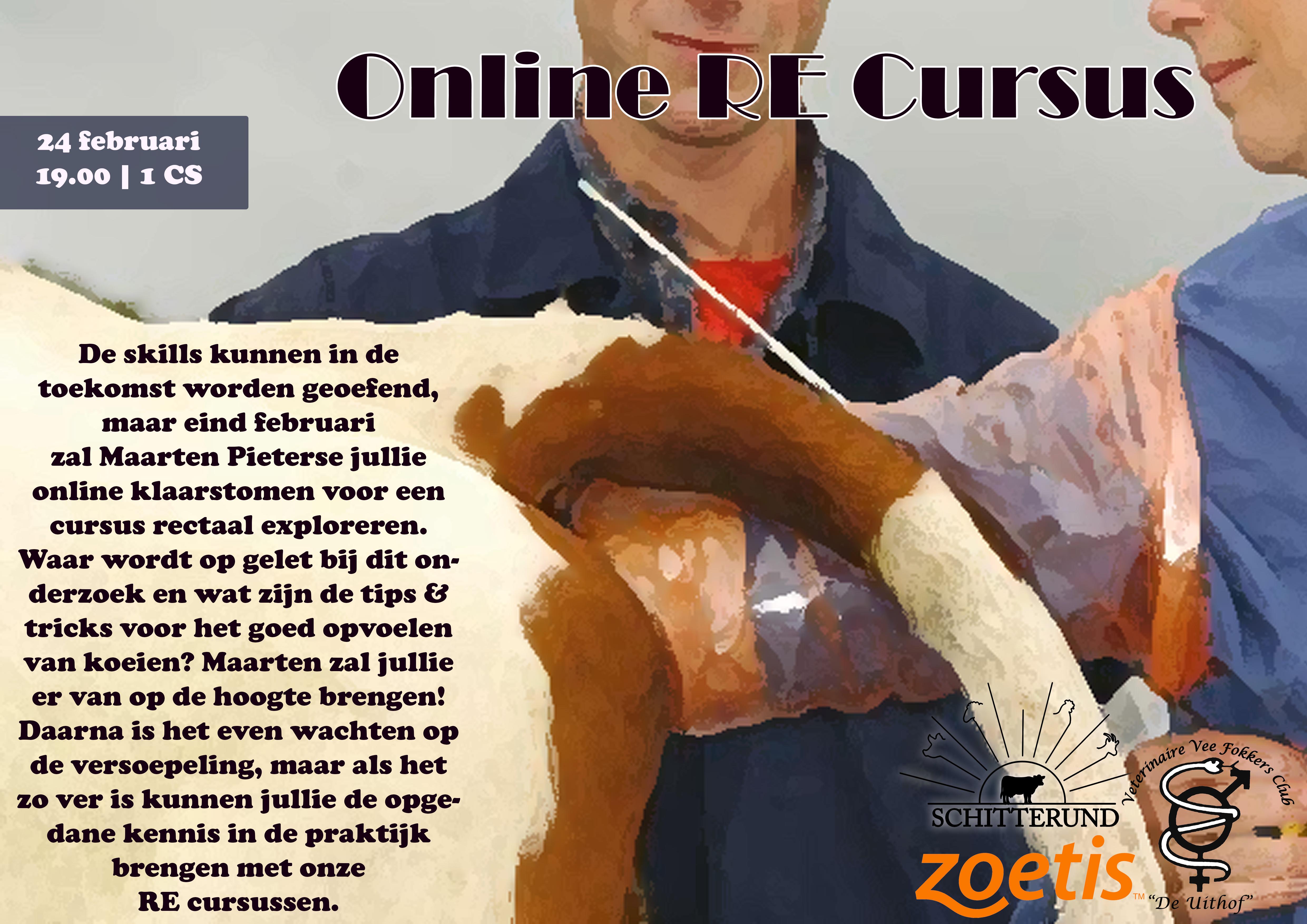 Online RE Cursus