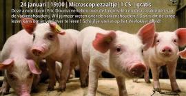 Lezing beginselen varkenshouderij