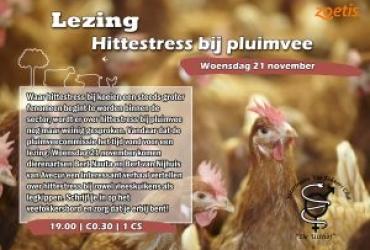 Lezing: Hittestress bij pluimvee