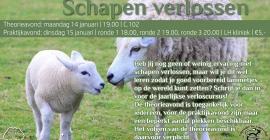Cursus schapen verlossen theorieavond