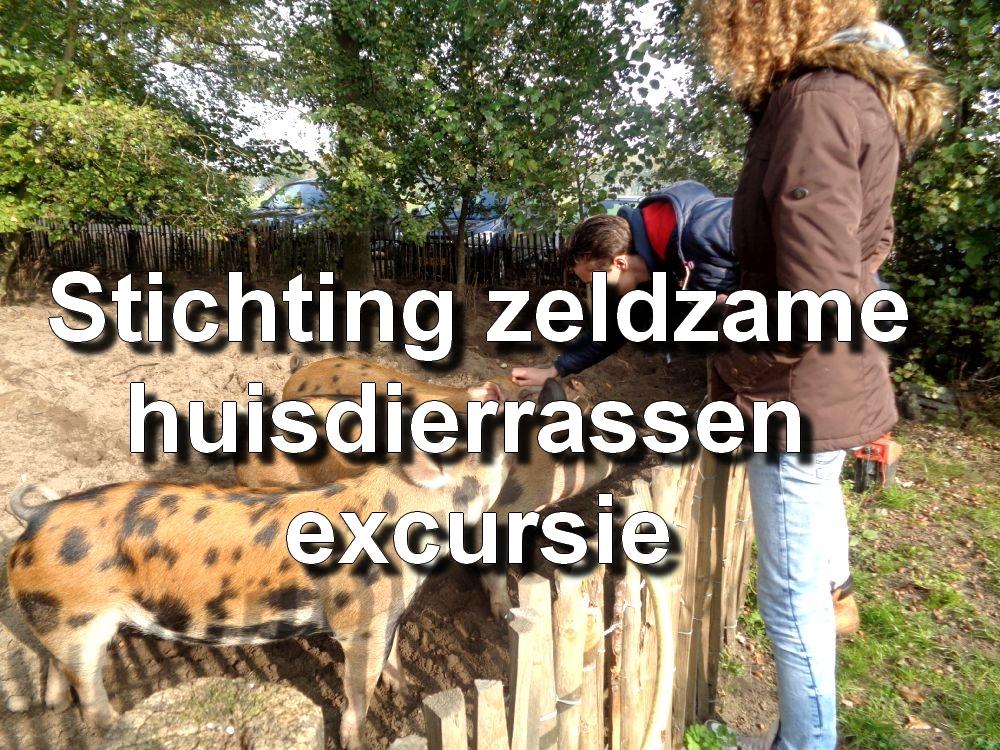 Stichting zeldzame huisdierrassen excrusie